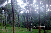 Well demanding 20cent land in Choothupara @ 4lakh.