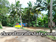 Chep rate land plot sale at Arayaloor Mangattukadavu