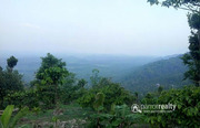 Excellent 2.50 acre resort purpose land in Mandad @ 87.50lakh