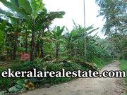 Low budget land sale at Chennanpara Vithura
