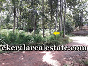 Immediate plot sale in Poonkulam Vellayani
