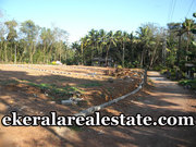Residential plot sale in Venjaramoodu low price