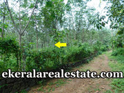 Nedumangad 2 lakhs per cent land plot for sale
