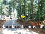 Lorry Access Plot for Sale in Kanjiramkulam