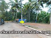 Road Frontage House Plot Sale at  Mangattukadavu