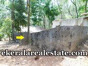 Residential Land Sale at  Puliyarakonam