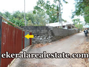 Budget rate Land Sale at Pathamkallu Nedumangad
