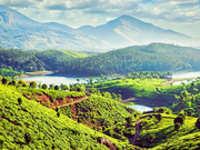 Munnar Tour Packages / Best Travel & Holiday Tour Packages in Munnar