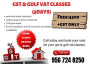3 days gst mentorship class