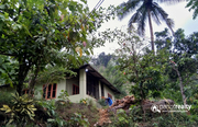 5 acre investment purpose land   for sale in Chipplithode - kozhikode