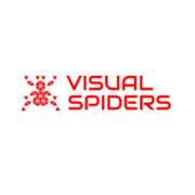 Affordable PowerPoint Presentation Design Services   Visual Spiders