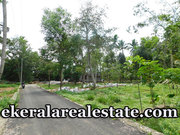 Mangalapuram 8 cents Lorry access plot for sale