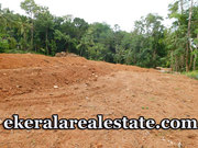 42 cents Residential Plot For Sale Near Mullassery Karakulam