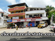 Kanjirampara  2 bhk apartment for rent