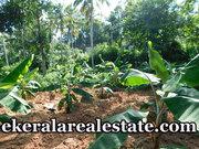 90 cents land sale at Kalliyoor Near Panchayat Office