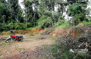 11cent house plot for sale in payyampally@ 75000/cent……