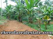 1.5 Acre Land for sale at Alantharakonam Peyad