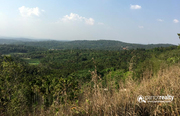 1.05 acre Resortpurpose land inManalvayal@30lakh