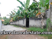 plot for sale at Avukkulam Near Karyavattom