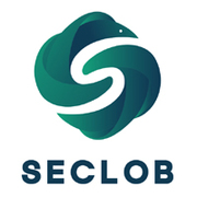 Seclob expert repair and maintenance local service