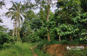 13 acre farm purpose property available near Anjukunnu - Wayanad