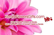 Order online for Sending Best Gifts, Flowers & Cakes to Calicut