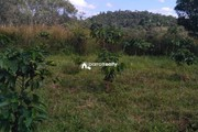 50 cent plot for sale in Andoor near Ambalavayal…