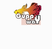 Premium Quality guppy shop in Kerala | Buy guppy online at guppyway