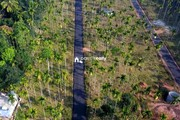 House plot for sale in Meenangadi @ 1.5lakh/cent….