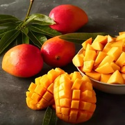 The Alphonso mango