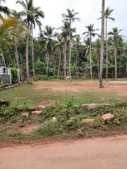 16 Cents Residential Land for sale at Pathiyarakkara - Maniyoor