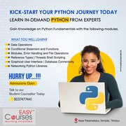 Professional Training on Python available both Online and Offline