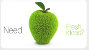 Best offer for web design in kerala